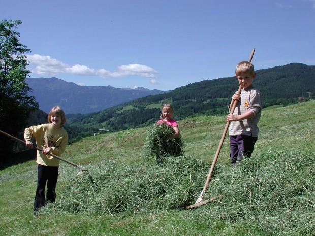 Kinder haben Spaß auf dem Feld beim Simonbauer